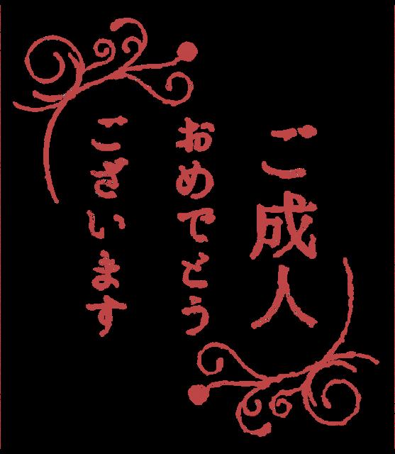 【祝】ご成人おめでとうございます!
